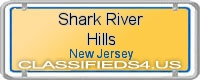 Shark River Hills board